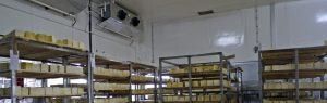 Cold room Repairs Pretoria east